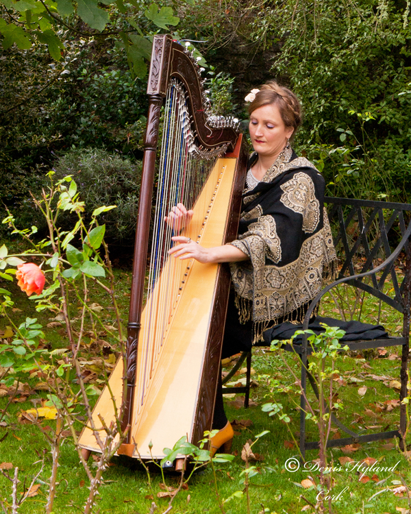 Harpist for weddings and funerals cork